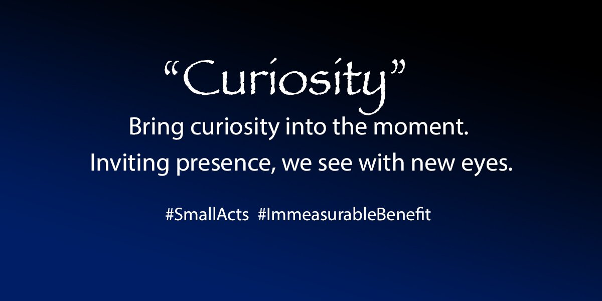 Curiosity word for 2021 small acts